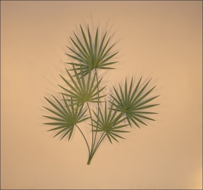 Chinese Palm Metal Wall Sculpture Art Indoor Single