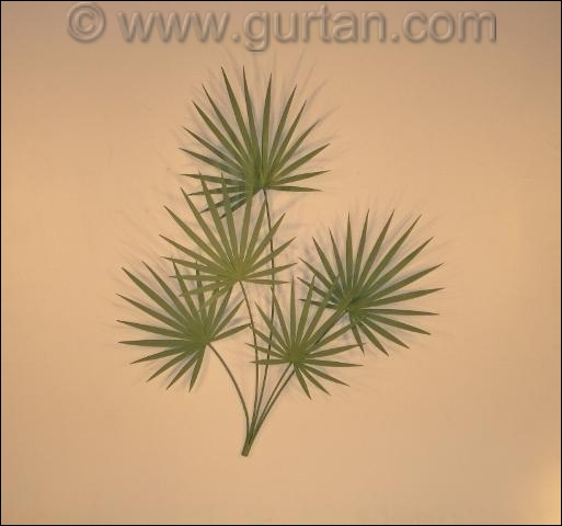 Chinese Palm Metal Wall Sculpture in green leaves