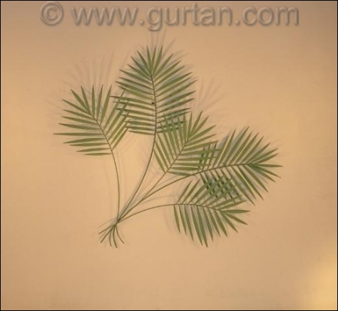 Palm Branch Metal Wall Sculpture in green tropical  leaves
