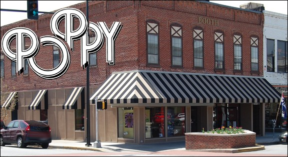 Poppy St. Lois Missouri Metal Wall Decor Gallery